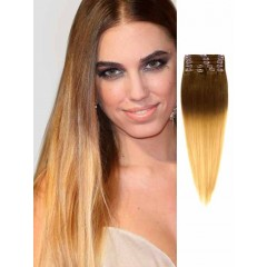 Brown and Blonde Straight Ombre Hair Extensions