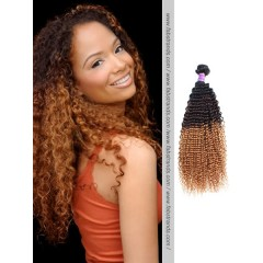 Black to Blonde Ombre Kinky Curly Weft
