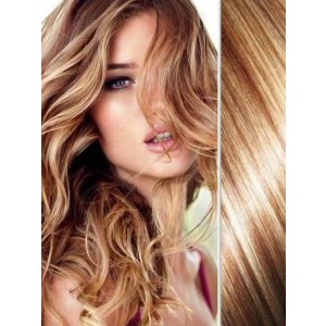 Highlights with Brown Hair Clip in Highlights Extensions